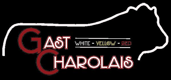 Gast Charolais